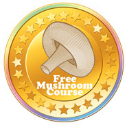 Free mushroom course online