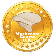 UK Mushroom Identification Course